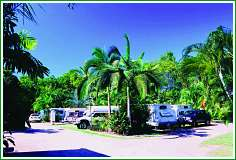 Tropical Hibiscus Caravan Park - Accommodation Sunshine Coast
