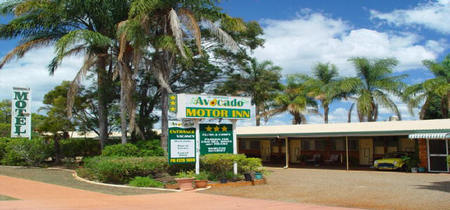 Avocado Motor Inn - Accommodation Sunshine Coast