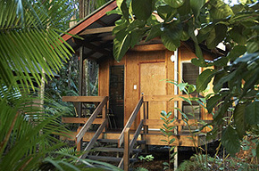 Cape Trib Beach House - Accommodation Sunshine Coast