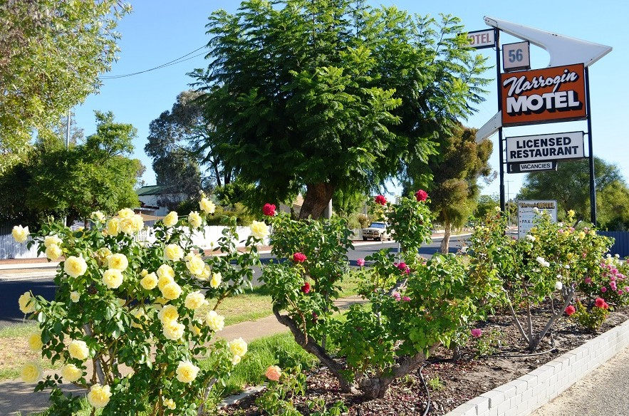 Narrogin Motel - Accommodation Sunshine Coast