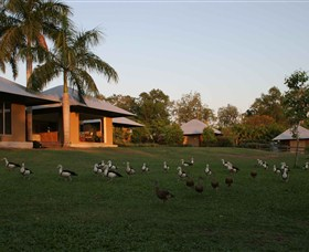Feathers Sanctuary - Accommodation Sunshine Coast