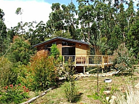 Southern Forest Accommodation - Accommodation Sunshine Coast