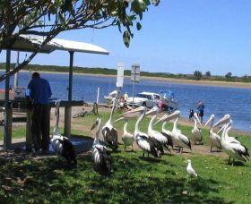 Mountain View Caravan and Mobile Home Village - Accommodation Sunshine Coast