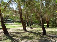 Woods Reserve - Accommodation Sunshine Coast