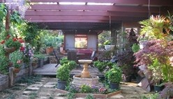 Blossoms Bed and Breakfast - Accommodation Sunshine Coast