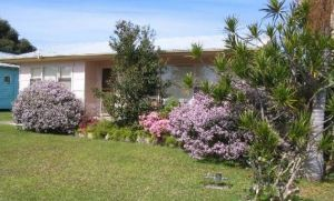 Maeville Cottage - Accommodation Sunshine Coast