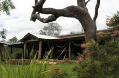 The Hollow Log Country Retreat - Accommodation Sunshine Coast