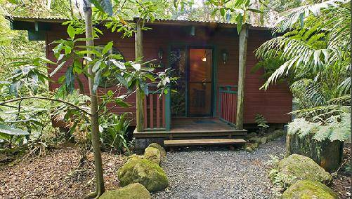 Springbrook Lyrebird Retreat - Accommodation Sunshine Coast