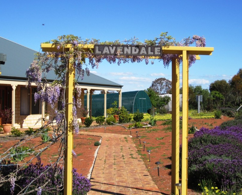Lavendale Farmstay and Cottages - Accommodation Sunshine Coast