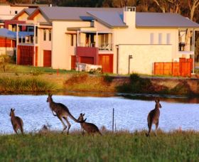 Grand Mercure The Vintage Hunter Valley - Accommodation Sunshine Coast