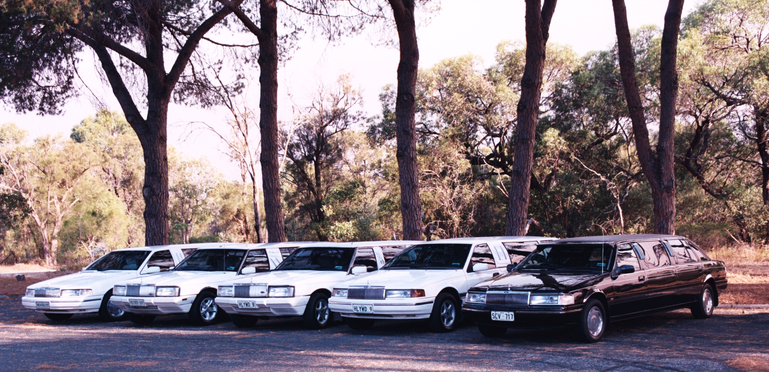 Hollywood VIP Limousines - Accommodation Sunshine Coast