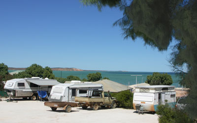 Blue Dolphin Caravan Park and Holiday Village
