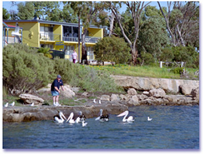 Almonta Holiday Apartments - Accommodation Sunshine Coast