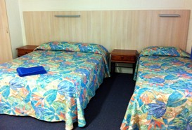 Mango Tree Motel - Accommodation Sunshine Coast