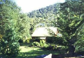 Horse Haven Farmstay - Accommodation Sunshine Coast