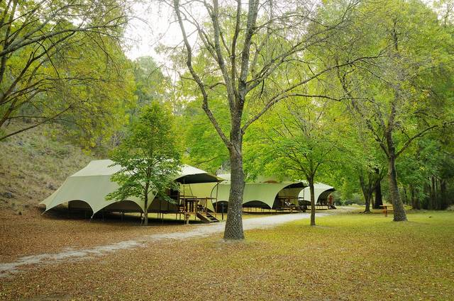 Buchan Caves Reserve - Accommodation Sunshine Coast