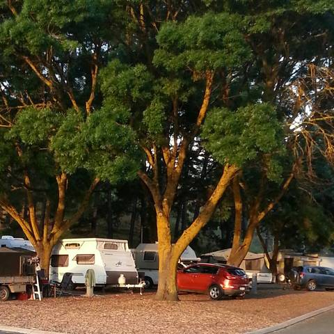 Queen Victoria Jubilee Park - Accommodation Sunshine Coast