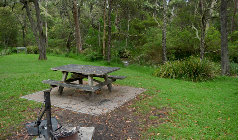 Chaelundi campground - Accommodation Sunshine Coast