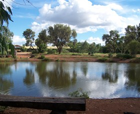 Gemtree Caravan and Tourist Park - Accommodation Sunshine Coast