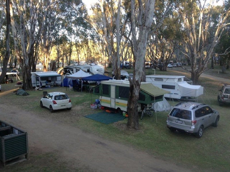 Bushlands on the Murray