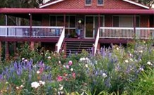 Rose Patch Bed and Breakfast - Accommodation Sunshine Coast