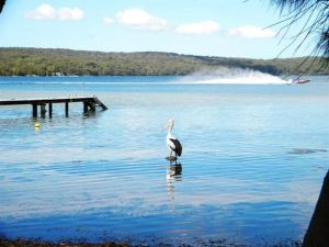 Dungowan Waterfront  Accommodation - Accommodation Sunshine Coast
