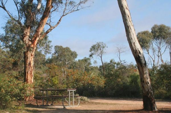 Drummonds Camp at Avon Valley National Park