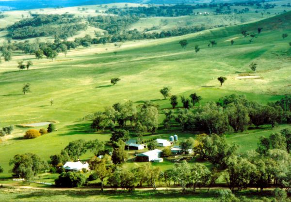 Daisyburn Homestead - Accommodation Sunshine Coast