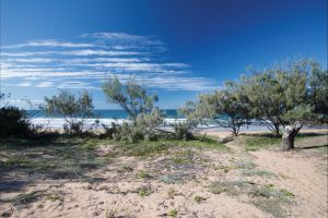 Deepwater National Park camping - Accommodation Sunshine Coast