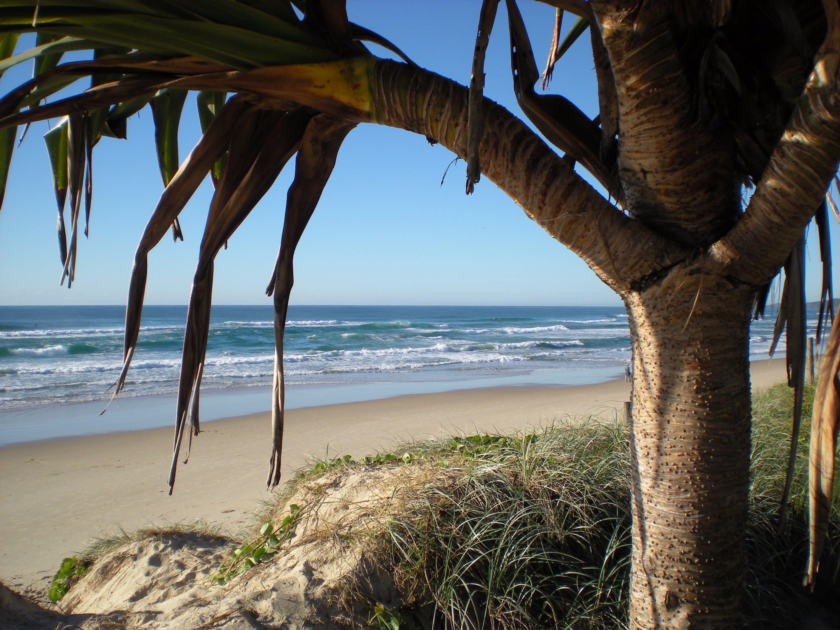 Horizons At Peregian - Accommodation Sunshine Coast