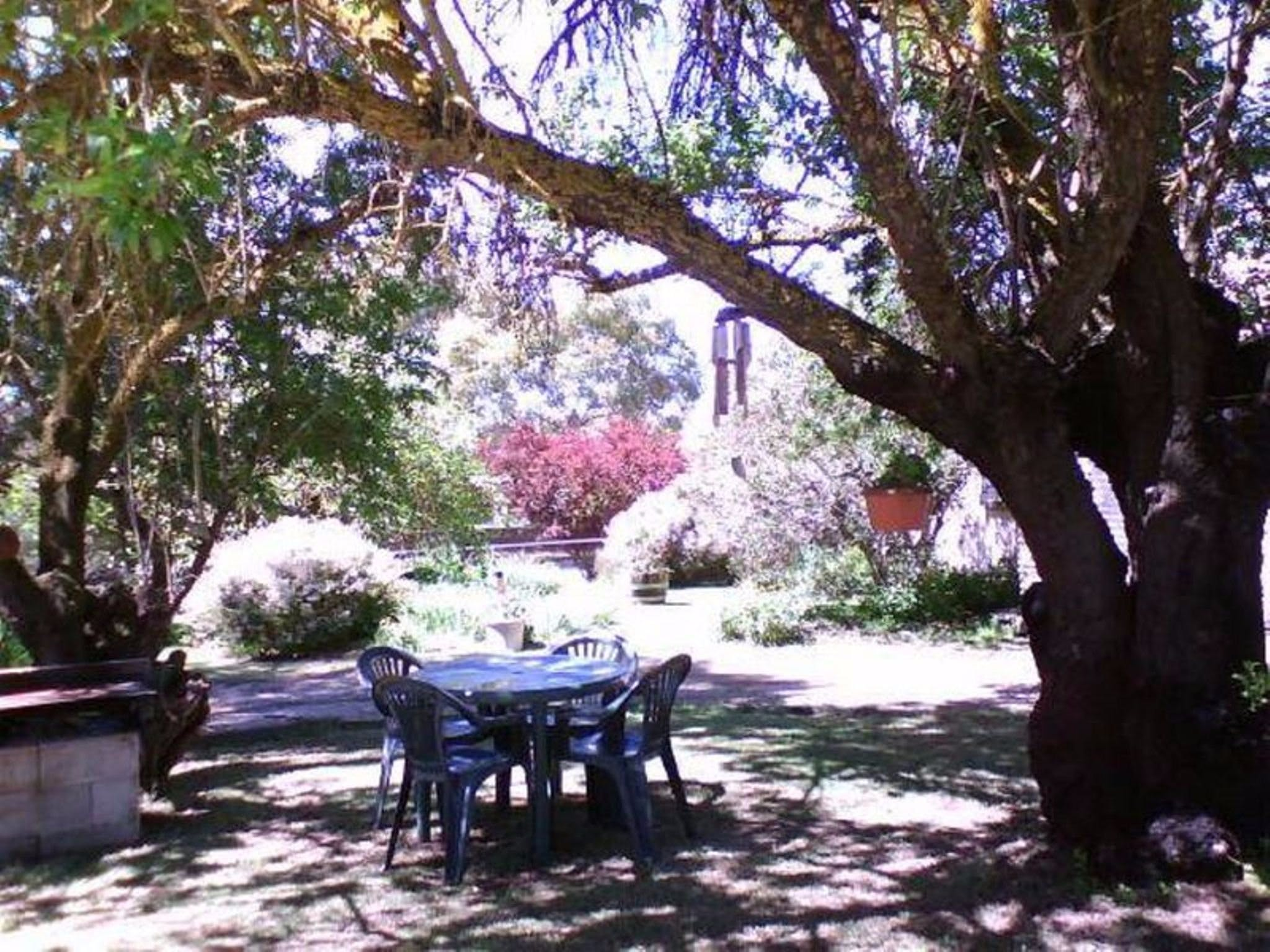 Morse Cottage - Accommodation Sunshine Coast