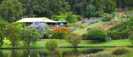 Pemberton Lavender and Berry Farm Cafe and Cottages - Accommodation Sunshine Coast