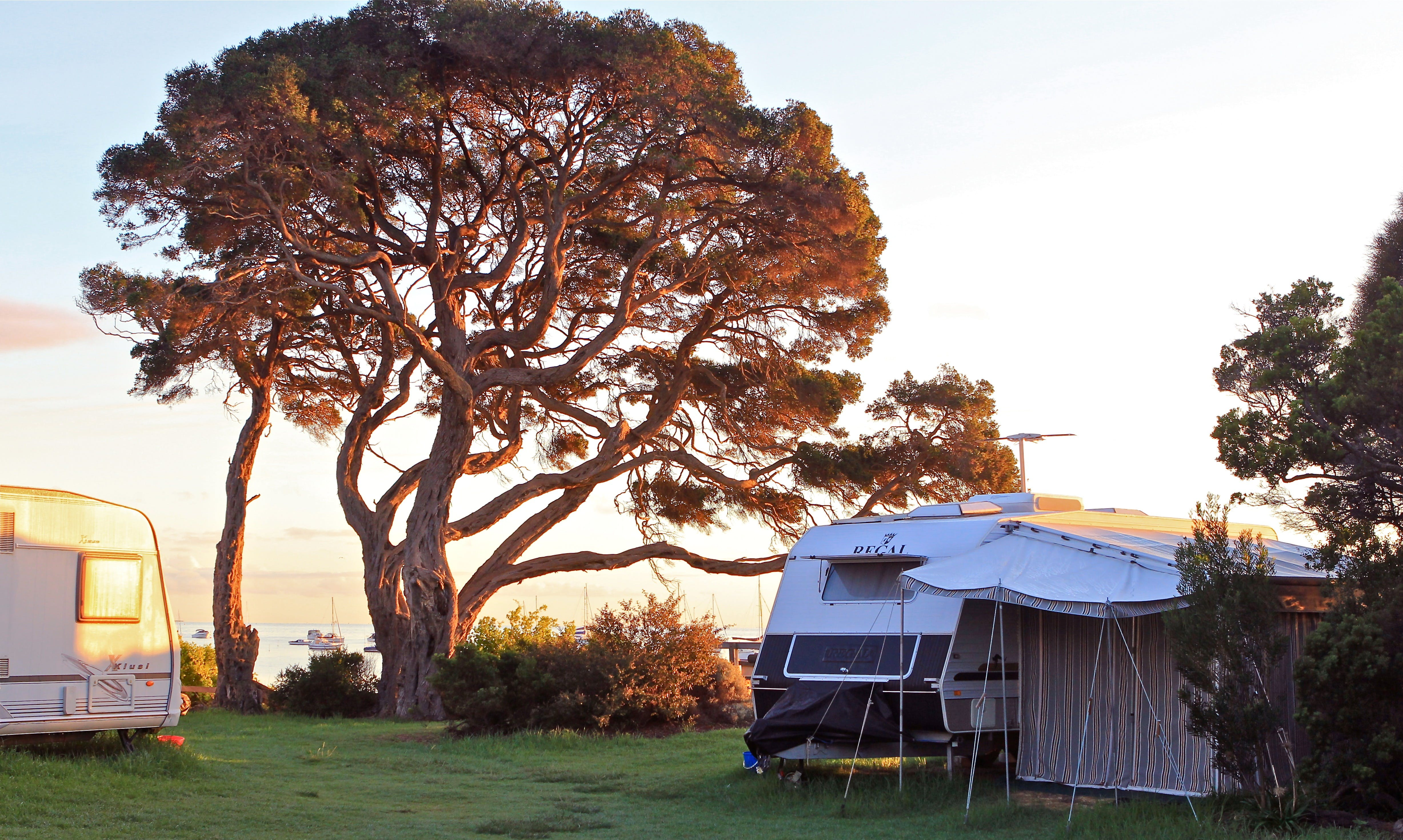 WhiteCliffs to Camerons Bight Foreshore Reserve - Accommodation Sunshine Coast
