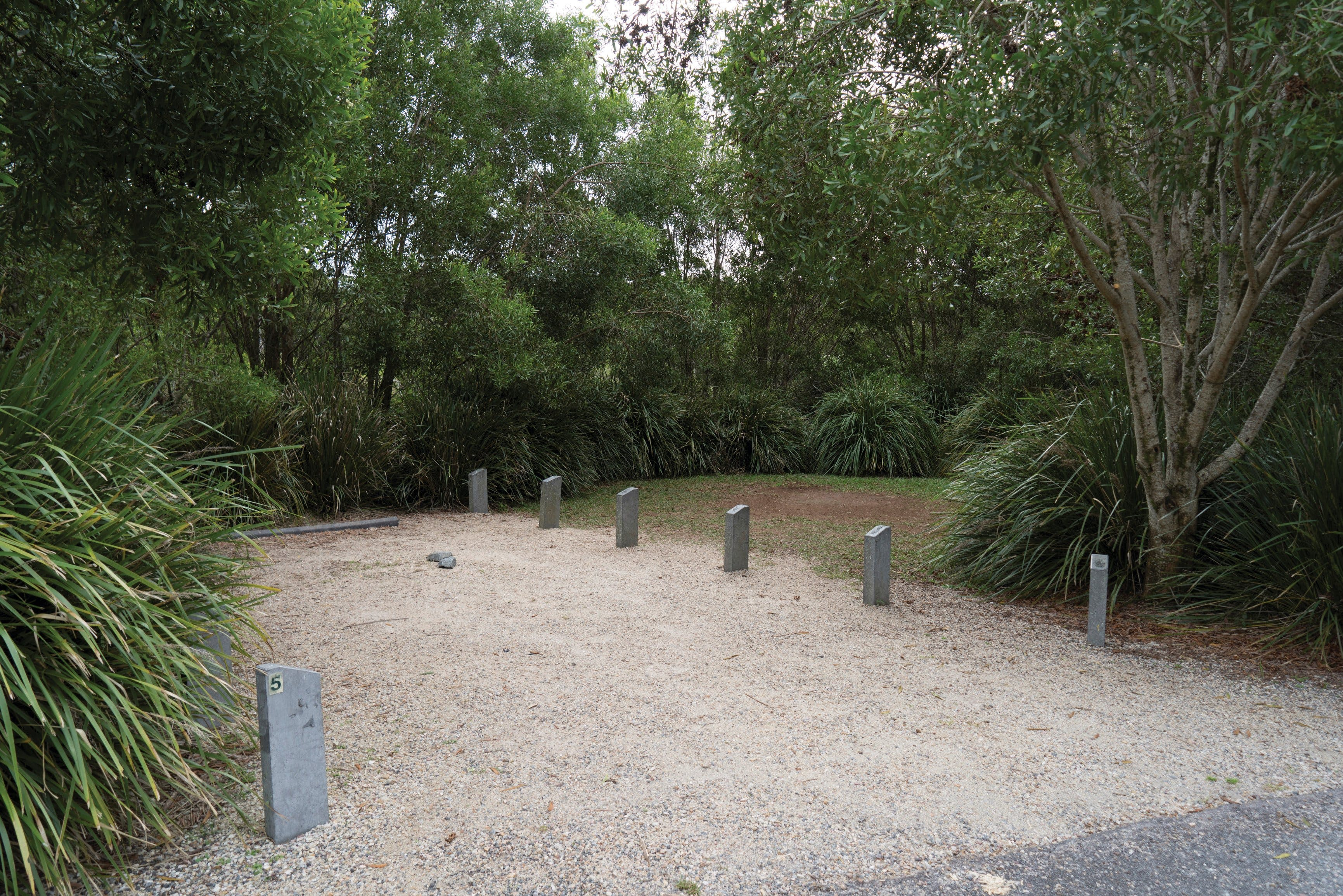 Springbrook National Park camping - Accommodation Sunshine Coast