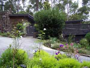 Sunway Farm B and B and Tours - Accommodation Sunshine Coast