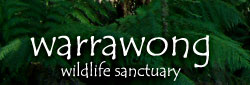 Warrawong Wildlife Park - Accommodation Sunshine Coast