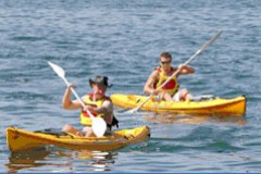 Manly Kayaks - Accommodation Sunshine Coast