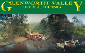 Glenworth Valley Horseriding - Accommodation Sunshine Coast