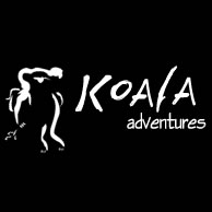 Koala Adventures - Accommodation Sunshine Coast