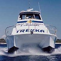 Sunshine Coast Fishing Charters - Accommodation Sunshine Coast