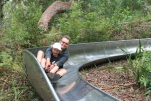 Toboggan Hill Park - Accommodation Sunshine Coast