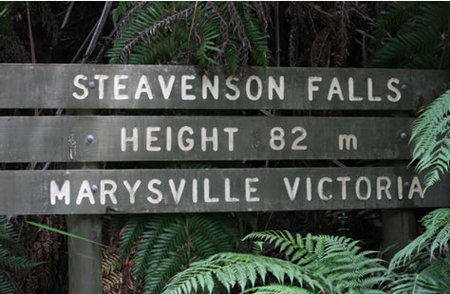 Stevensons Falls - Accommodation Sunshine Coast