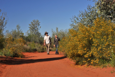 Alice Springs Desert Park - Accommodation Sunshine Coast
