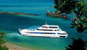 Queensland Day Tours - Accommodation Sunshine Coast