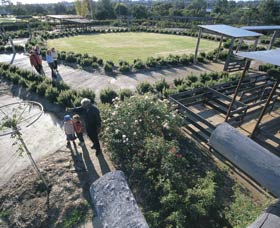 Kojonup Rose Maze - Accommodation Sunshine Coast