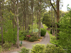 Mount Lofty Botanic Garden - Accommodation Sunshine Coast