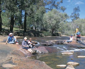 John Forrest National Park - Accommodation Sunshine Coast