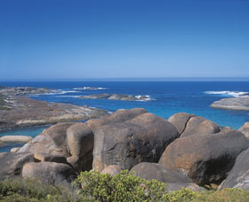 Elephant Rocks - Accommodation Sunshine Coast