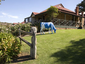 Longview Vineyard - Accommodation Sunshine Coast
