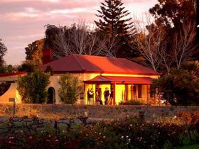 Elderton Wines - Accommodation Sunshine Coast